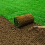 Exactly How to Deal With New Sod Lawns